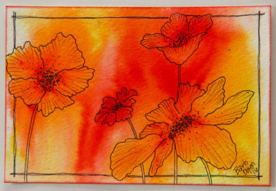 Red-Orange-Yellow-Poppies-700x484px