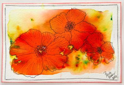 Red-Orange-Yellow-Green-Open-Flowers-700x480px